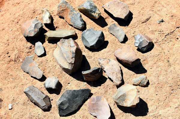 Steinwerkzeuge fast so alt wie Dinosaurier?